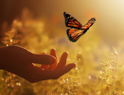 Szüless újjá – A gyász feldolgozása