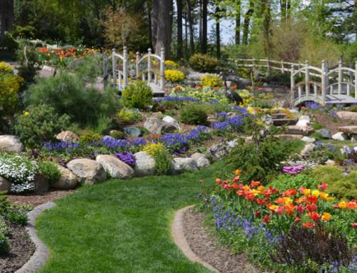 Ökologikus kerttervezés workshop
