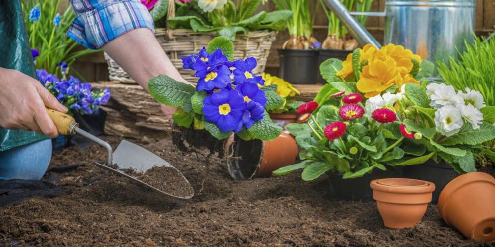 kertészkedj a Holddal (1000px X 500px) 2019 03 08